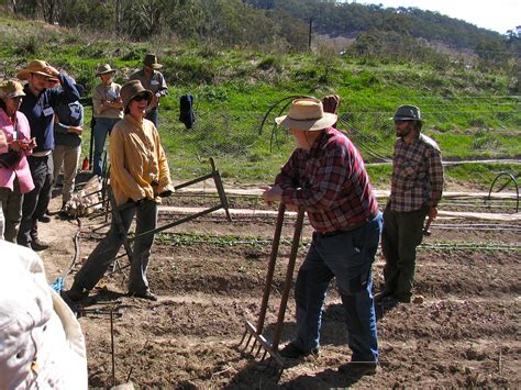 cultivating soil food  life   gundaroo tiller