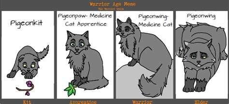 Warrior Cats Meme - warriorcatmeme explore warriorcatmeme on deviantart
