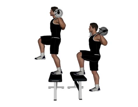 dumbbell bench step up top 5 exercises every rugby player should be doing