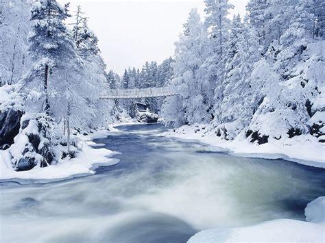 frozen winter wallpaper frozen river and trees wallpapers frozen river and trees