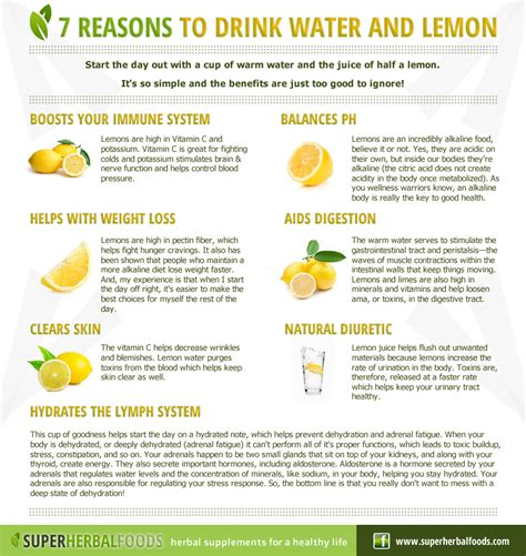 7 Reasons To by Herbal Foods Remedies Seven Reasons To
