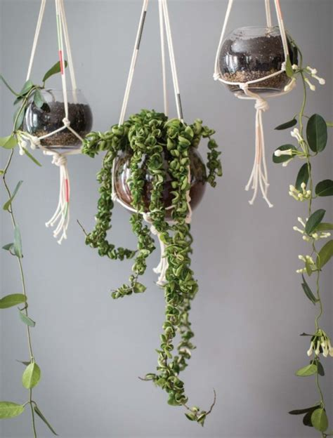 How To Make A Simple Macrame Plant Hanger - how to make modern macram 233 plant hangers