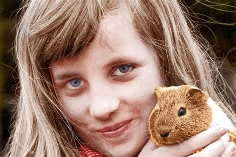 lady charlotte diana spencer how one family pet links princess charlotte to her