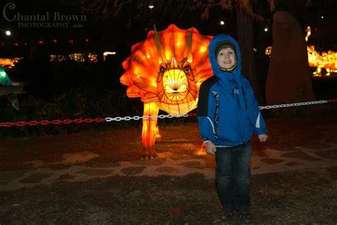 lights at fair park dallas lantern festival at dallas fair park
