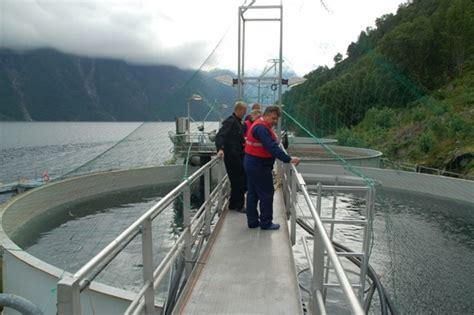 fjord zout water zalmkwekerij en verwerking een kijk in de keuken the