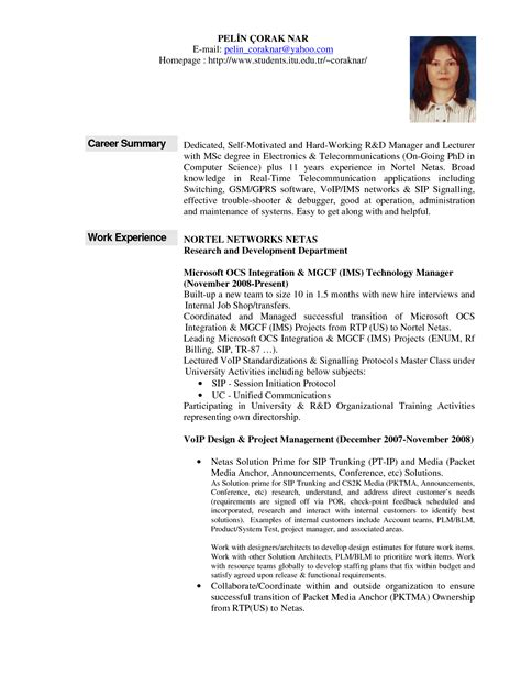 Sle Resume Career Summary It Resume Summary Exles 28 Images Information