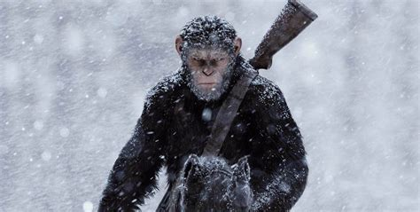 War For The Planet Of The Apes 2017 Dvd war for the planet of the apes 2017 spoiler free review