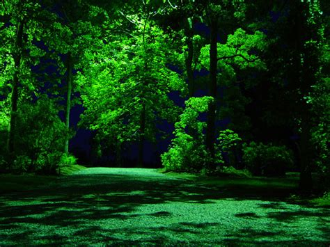 Landscape Lighting Wholesale Electricwholesale Electric Landscape Lighting Wholesale