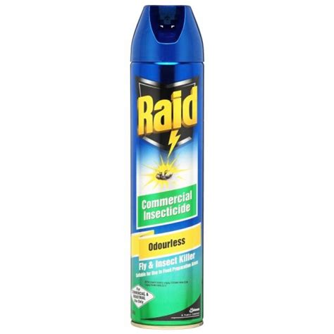 raid insect spray 450gm odourless j div all products