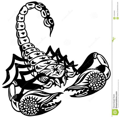 scorpion black white stock vector image 41554945