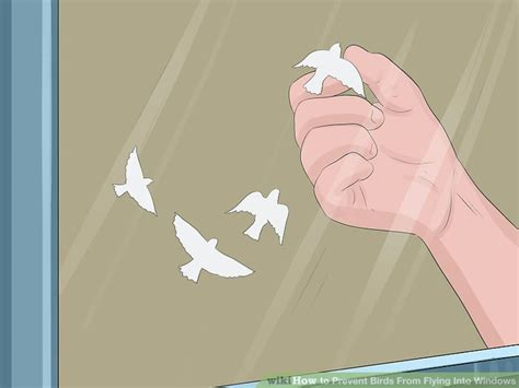 Window Decals Deter Birds by 3 Ways To Prevent Birds From Flying Into Windows Wikihow