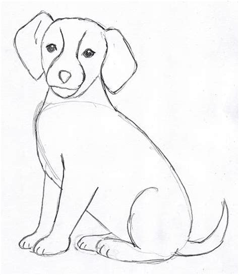 The Beagle Barn Dog Drawing Step By Step Samantha Bell