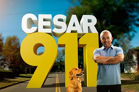 "renewed and returning: ""cesar 911,"" ""web of lies"" » realscreen"