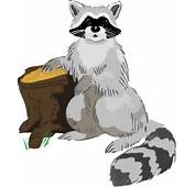 72 Raccoon Clipart Images  Use These Free For Your
