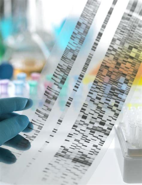 genetic engineering research paper genetic engineering research paper pdf biology 162 human
