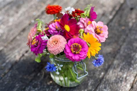 the flower year a the cut flower growing year gardenersworld com