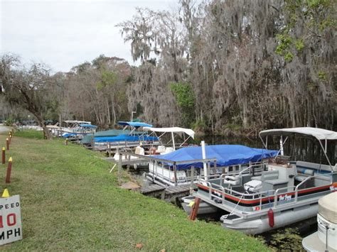 boat rentals leesburg fl boat jet ski swim and more on nearby lake weir