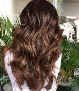 Light Ombre Hair 30 Natural And Rich Brown Hair Ideas Styleoholic