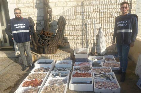 concorsi capitaneria di porto bat bat denunce e sequestro di pesce da parte della