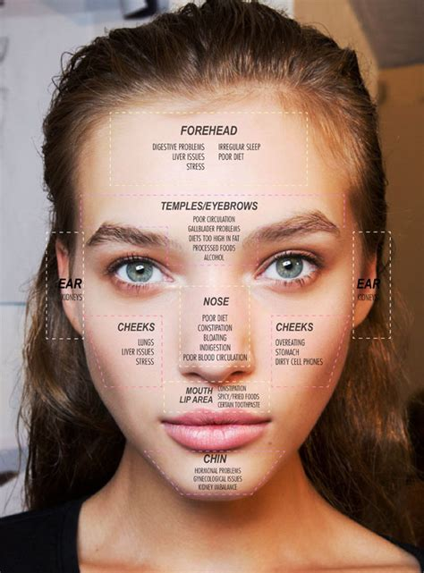 breakout map mapping what that pimple is trying to telling you
