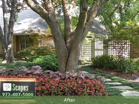 Landscape Rock Dallas Eller Residence Dallas Tx Scapes Incorporated Dallas