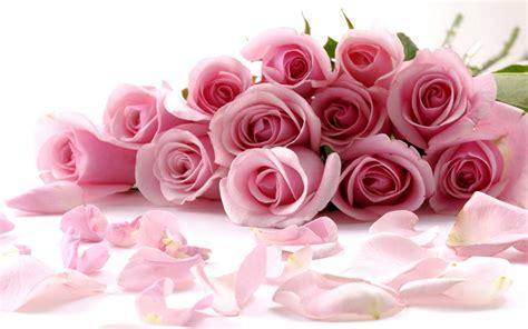 walppar madre fondo de pantalla de ramo de rosas d 237 a de la madre