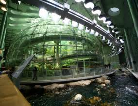 Good Academy Of Arts And Sciences San Francisco #2: California_Academy_of_Sciences_Indoor_Rainforest.jpg
