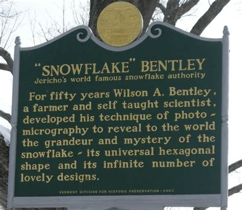 snowflake wilson bentley snowflakes the o jays and image search on pinterest