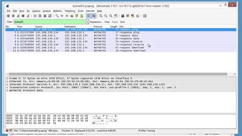 wireshark dissector tutorial lua packet class wireshark lua protocol dissectors youtube