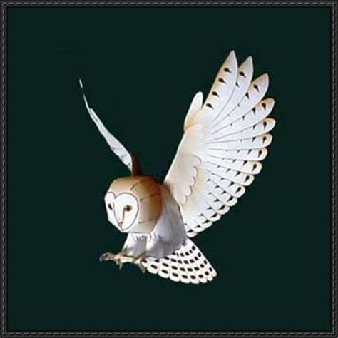 Owl Papercraft - paper models barn owls and owl on