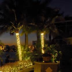 exterior landscape lighting fixtures 10 things you should about palm tree outdoor lights