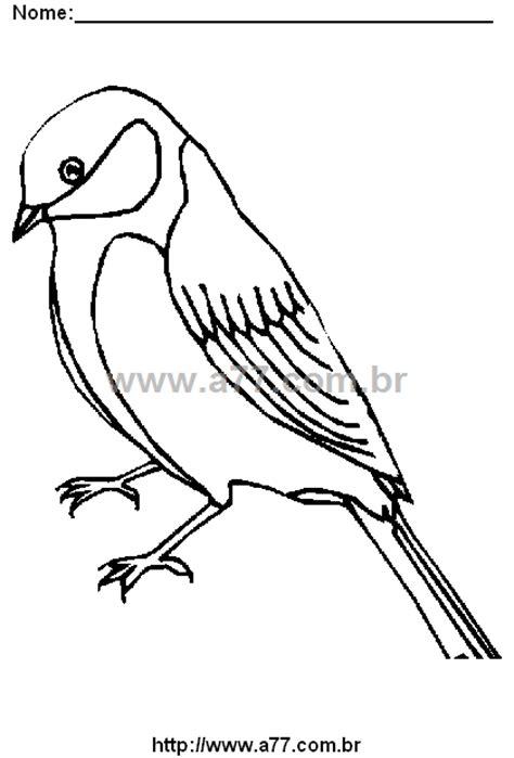 Desenho Para Colorir Tema: Ave. Pássaro Para Colorir.