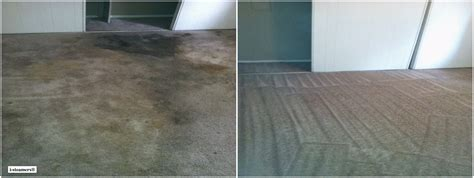 Professional Rug Cleaning Nyc by Wall To Wall Carpet Cleaning Nyc I Steamers