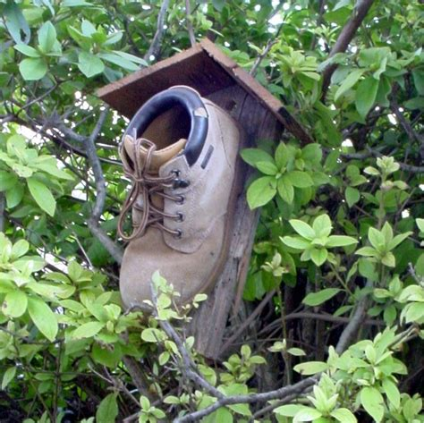 Nice Hourse by Lilac Lane Cottage Bird Houses