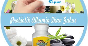 Chalbumin Kapsul Albumin Ikan Gabus Probiotik Albumin khasiat dahsyat kapsul albumin dari ekstrak ikan gabus