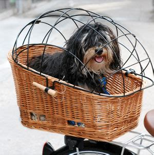 bike baskets for dogs pet baskets trailers talbot s cyclery san mateo ca