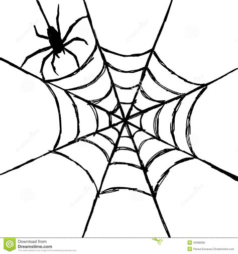 drawing web spider and web stock vector image of design