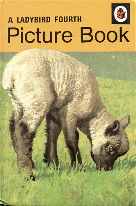 ladybird picture books fourth picture book vintage ladybird book early learning