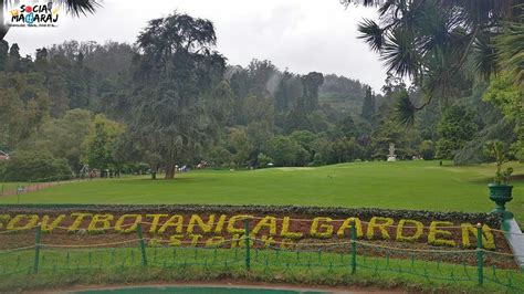 exploring ooty botanical gardens and dodabetta peak in ooty