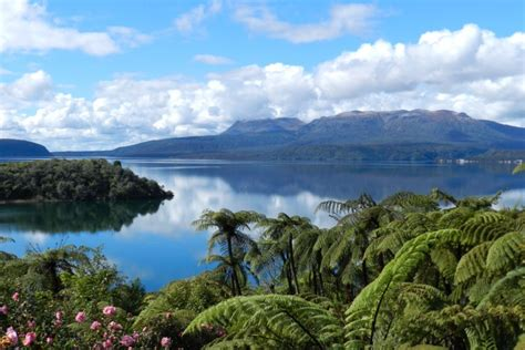 tui glen lake front bach with stunning homeaway