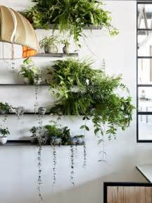 apartment plants living spaces why i said goodbye to flowers and hello to potted plants adoreness