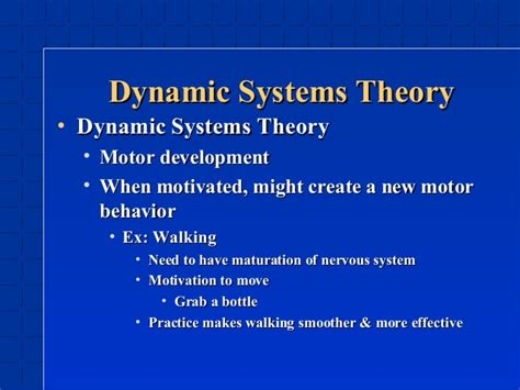 dynamic pattern theory exles life span chapter 3