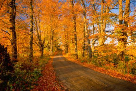 Free Hugs Ukuran L 1 fall foliage sightseeing tour from boston boston viator