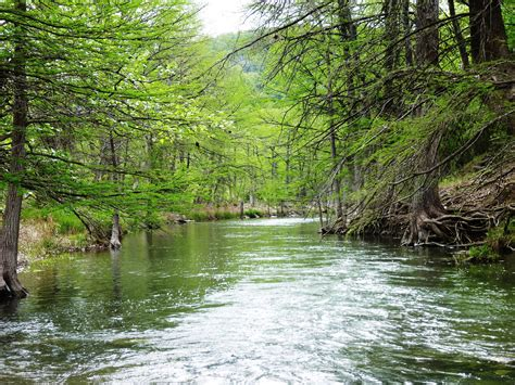 riparian and stream ecosystem workshop set for may 13 in