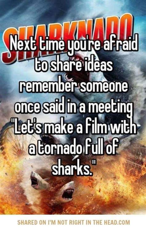 Sharknado Meme - 17 best images about sharks on pinterest jaws movie