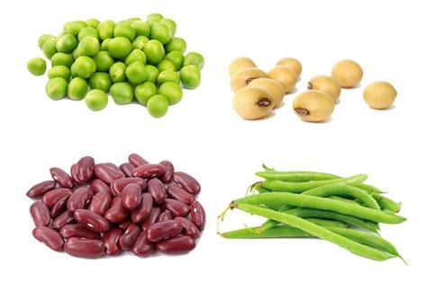 alimentos  proteina vegetais ou animais lista completa tua saude