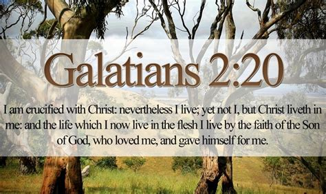 Wedding Bible Verses King Version by Galatians 2 20 Verses From The King Bible