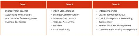 Advantages Of Integrated Mba by Bba Degree Courses Colleges India Best Institute