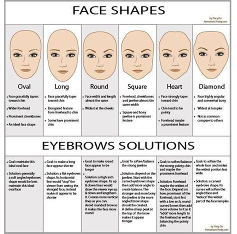 a visual guide to eyebrow shapes eyebrow shape guide www chrislie com makeup diy pinterest