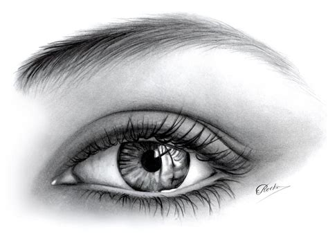 imagenes en blanco y negro de ojos dibujos a l 225 piz de ojos dibujos a lapiz
